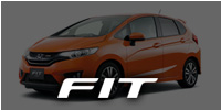 13- FIT RS / JAZZ (GK5)